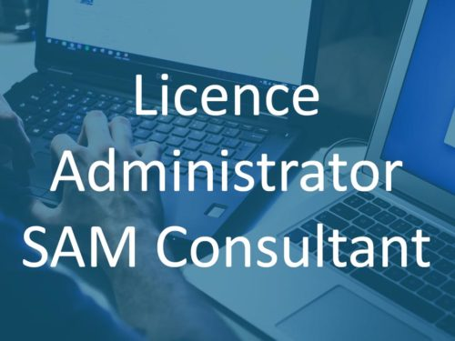 Licence Administrator SAM Consultant