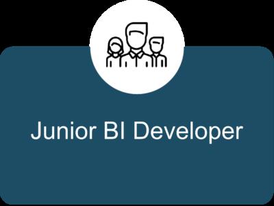 Junior BI Developer